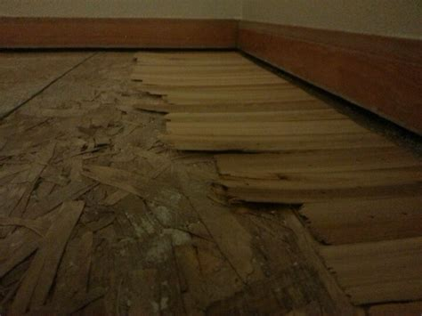 level  sloping  floor  shims home home