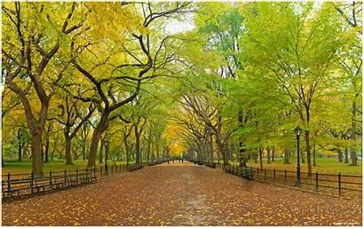 Central Park Wallpapers Background York Desktop Backgrounds