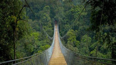 jembatan gantung  gunung curug sawer sukabumi gunung