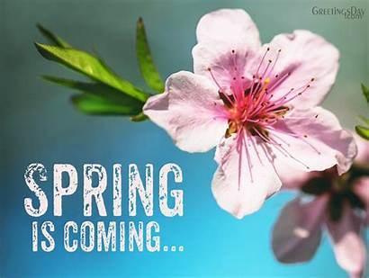 Spring Coming Welcome Cards Woman Quotes Springtime