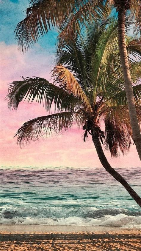 freetoedit wallpapers wallpaper beach background palm