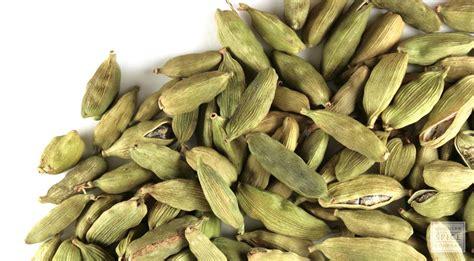 container cuisine whole cardamom pods buy bulk cardamom pods