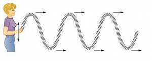 A Longitudinal Wave Vs Transverse