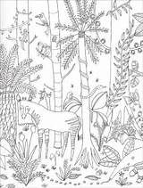 Paradise Coloring Pages Jungle Into Wild Lorna sketch template