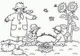 Coloring Garden Adults Popular sketch template