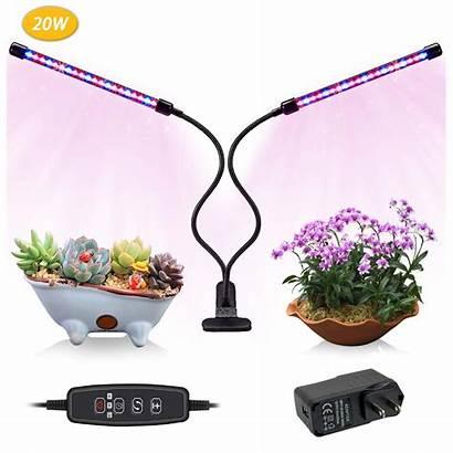 Grow Indoor Ventilation Adequate Plants Lights Air