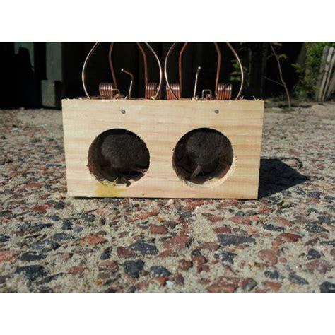 wooden mouse traps  holes