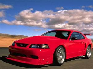 2001 Ford Mustang SVT Cobra - Overview - CarGurus