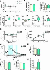 Exogenous Administration Of Unag In Old Wt Mice Attenuates