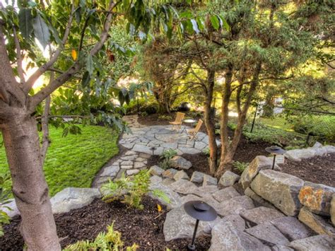 landscaping trees ideas patio coverings ideas landscaping under pine trees ideas landscaping ideas pine trees interior