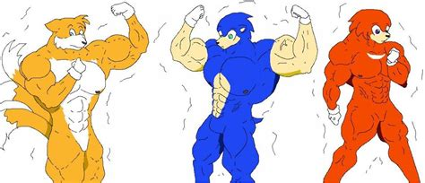 Adventures Sonic Tails Muscle Growth Pictures To Pin On