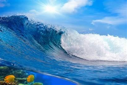 Waves Sea Nature Fish Desktop Backgrounds Wallpapers