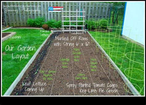 garden layout    raised garden bed  images
