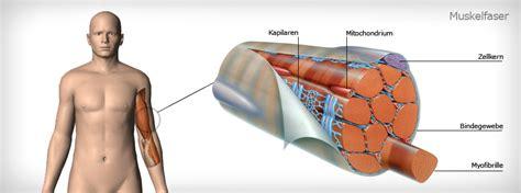Osteochondrose forum