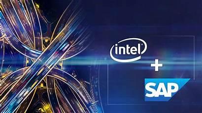 Intel Sap Technology Partnership Transformation Power Tech