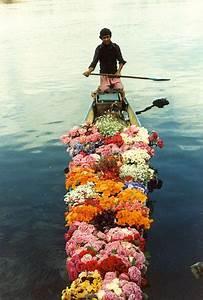 Best 25+ Flower delivery ideas on Pinterest   Fresh flower ...