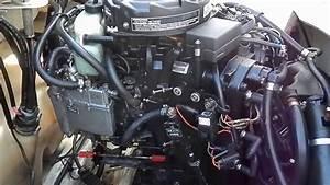 Seadoo Challenger 2000