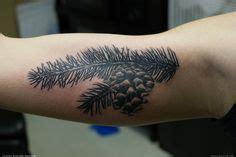 pine tattoo images pine tattoo pinecone tattoo