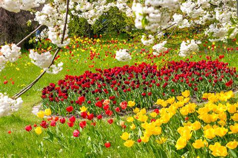 Britzer Garten Percussion Festival by Tulipan In Britzer Garten Een Beetje Keukenhof In Berlijn