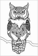Owl Coloring Owls Colorare Gufi Disegni Adults Hibou Mandala Animals Adulti Colorear Eulen Coloriage Gufo Hiboux Erwachsene Piercing Buhos Adultos sketch template