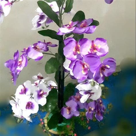 Gubahan Bunga Orkid Drone Fest