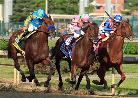 kentucky horses bourbon bluegrass  shareamerica