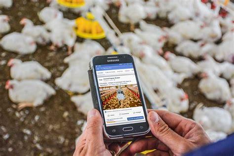 chambre d agriculture cotes d armor quelle place pour les réseaux sociaux sur l 39 exploitation