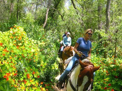 riding horseback diego san