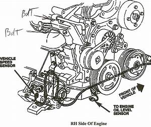 Diagram Of 98 Chevy Lumina Water Pump Location  Diagram