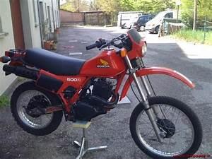 1982 Honda Xl400r  U0026 Xl500r Motorcycle Service  U0026 Repair