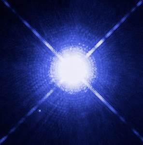 Sirius the Dog Star - Star Gaze Hawaii