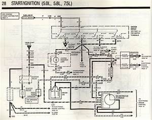 Fuel Injection Wiring Diagram For 1989 Ford Bronco