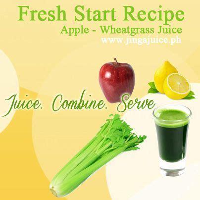 juice wheatgrass wheat recipes celery juicer juicing grass
