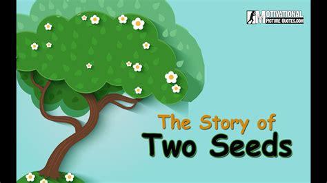 motivational short story   seeds  inspirational