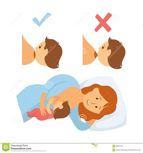 Correct Breastfeeding Position Stock Vector Image 68361753