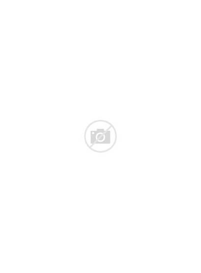 Malamute Alaskan Dog Clipart Cartoons