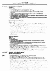 administrative assistant resume skills marcom manager resume samples velvet jobs