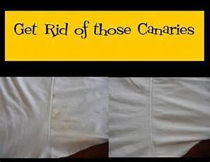 Blanchir Linge Jauni Vinaigre : les 25 meilleures id es de la cat gorie taches sous les bras jaunes sur pinterest taches sous ~ Melissatoandfro.com Idées de Décoration