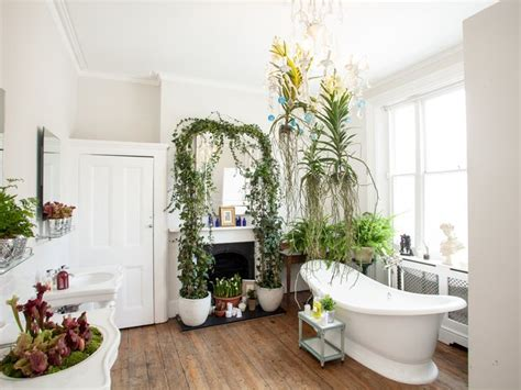 houseplants that thrive in your bathroom the joy of plants