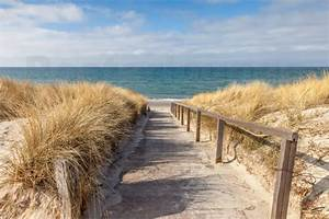 Strandbilder Auf Leinwand : christian m ringer weg zum strand an der ostsee poster online bestellen posterlounge ~ Watch28wear.com Haus und Dekorationen