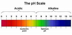 File:141128 Phil Holliday - pH scale final.png - Wikimedia ...