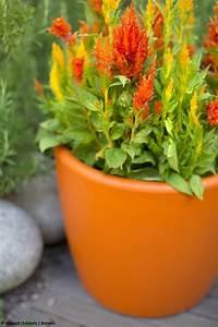 Cache Pot Pas Cher : un salon de jardin color joli place ~ Dailycaller-alerts.com Idées de Décoration