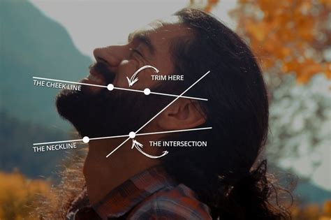 trim shape beard fast easy guide style