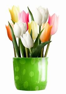 Pot De Fleur Transparent : pingl par karine bossy sur printemps pinterest fleurs et tulipe ~ Teatrodelosmanantiales.com Idées de Décoration