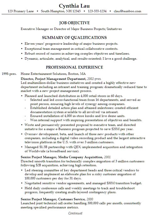 Business Management Resumes by Chronological Resume Sle Executive Business Director