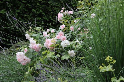 Dārzs atspirdzinošai atpūtai. Portfolio. Skaistākie dārzi