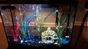 Aquarium In Wand : aquarium with 14 inch aqueon flex led aquarium bubble wand youtube ~ Orissabook.com Haus und Dekorationen