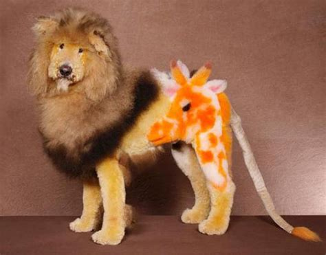 google image search inspiration poodle grooming art