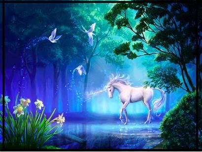 Eenhoorn Plaatjes Animaatjes Unicorn Animated Unicornio Gifs