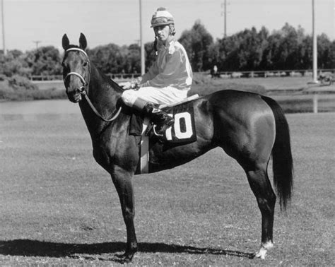 charger bar racing horse hall fame go horses rocket aqha mare american into tiny thoroughbred quarter qh 1968 race tb